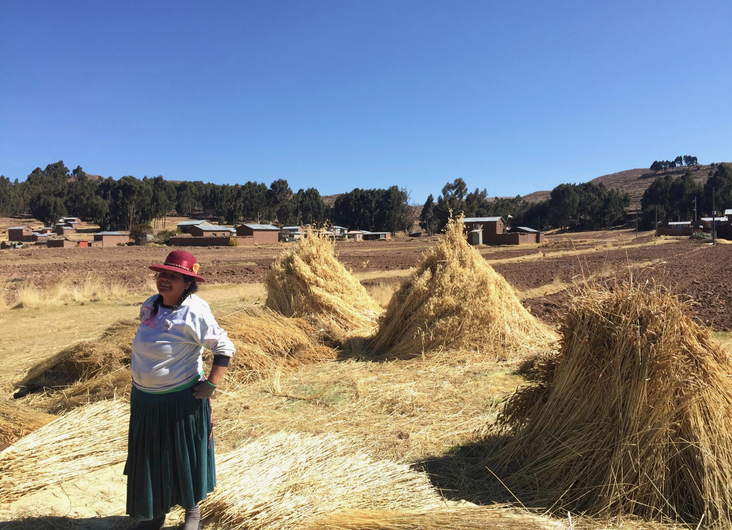 woman with hay